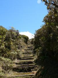 ca monte dur pour atteindre le mont Egmont
