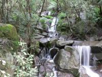 Cascade aux Dandenongs