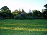 La vue du parc