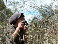 Nico photo reporter