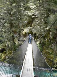 Un pont suspendu sur la routeburn