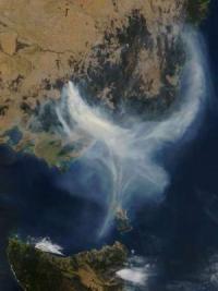 Les incendies au dessus du Victoria